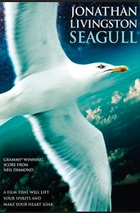 Jonathan Livingston Seagull [DVD9] [Latino]