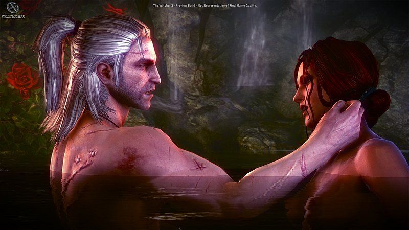 The Witcher 2 Assassins of Kings (2011/PC/) Only CRACK-SKIDROW.