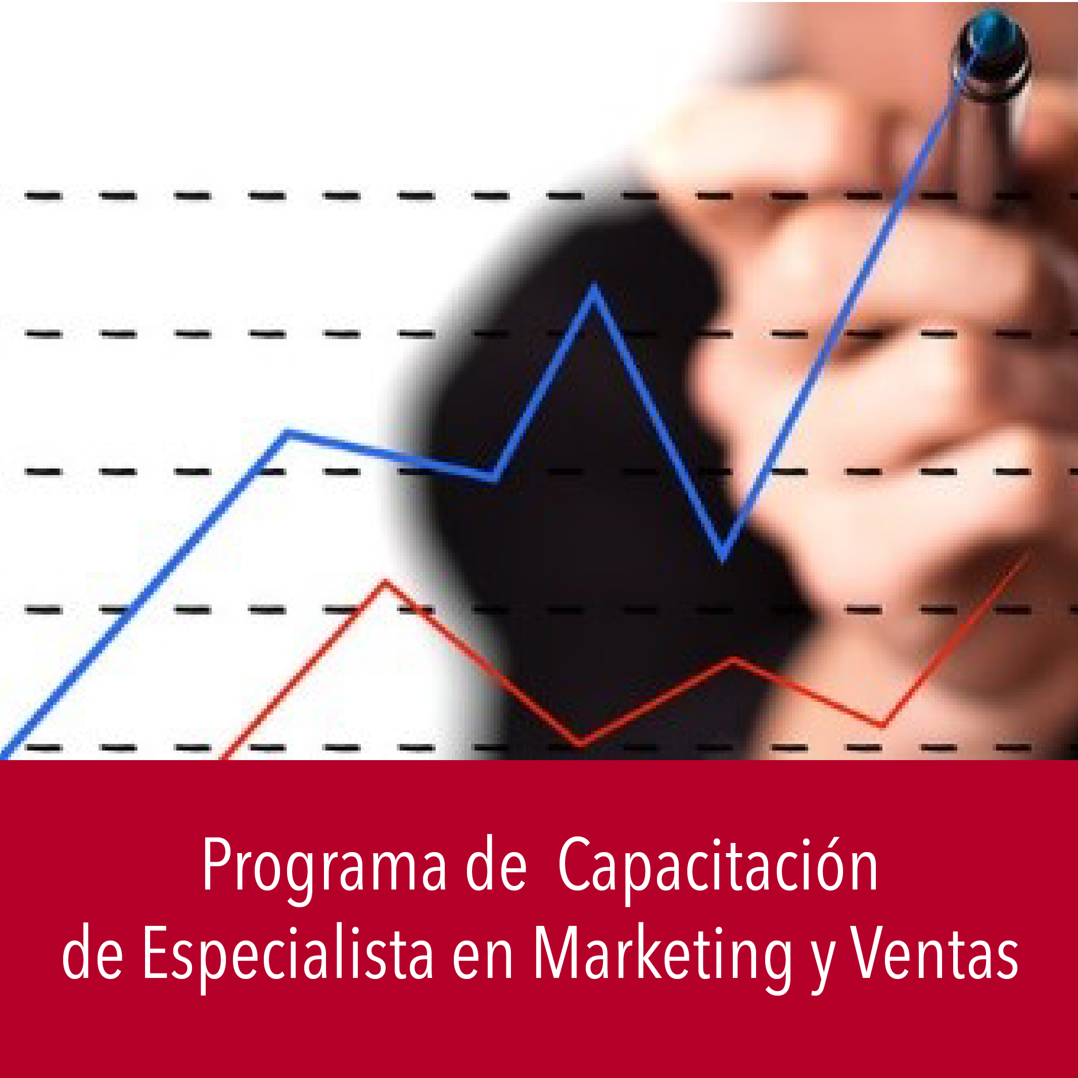 Especialista en Marketing y Ventas