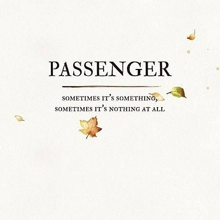 Passenger – Sometimes It's Something, Sometimes It's Nothing at All (2019) mp3 - 320kbps