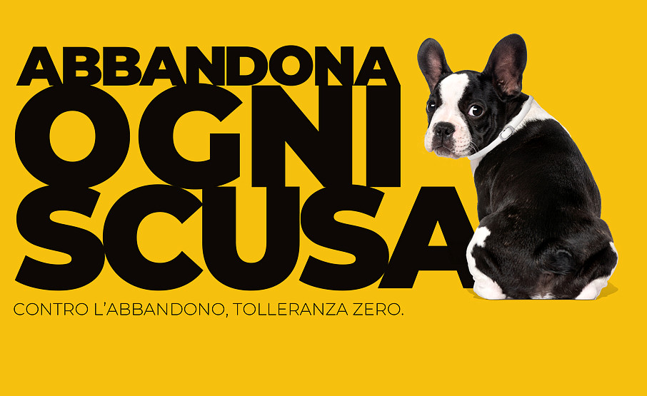 MSD Animal Health in collaborazione con ENPA lancia la campagna #NOABBANDONO2020