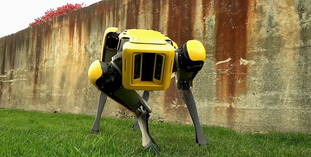 VIDEO YOUTUBE > La Polizia ha testato il cane robot Boston Dynamics.